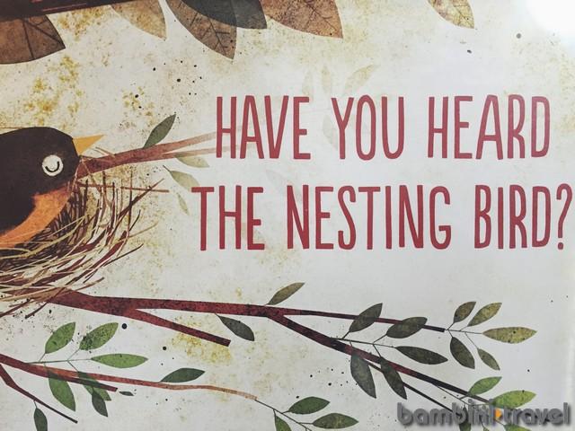 Nesting Birds Mini Unit – Bambini Travel